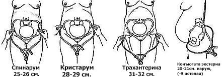 Тетраборат натрия при стоматите у беременной 39